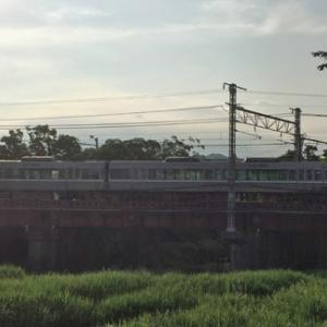 昨日と今日のウォーキング ~芹川鉄橋 & 八坂浜~