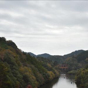 秋の周遊 房総さとやまgo 千葉県 終