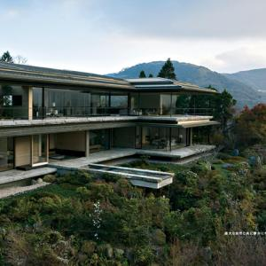 もし貴方が大富豪なら、こんな家に住んでみたいと思うか?