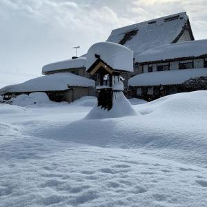 雪の惨状を写真でとくとご覧あれ(笑)