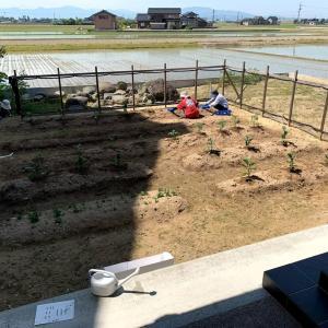 夏野菜の苗植えの横で三回目の土留め石の工事