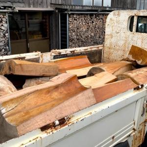 巨大な玉木が解体されて運ばれてきた