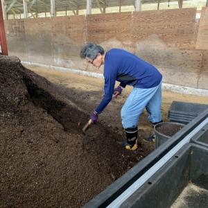 鶏舎へ堆肥を貰いに行ったら有料になっていた