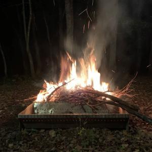 別荘内の枯れ枝を集めて焚き火をしてみた