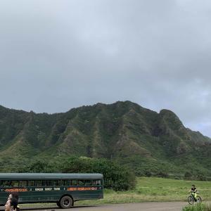 年末年始ハワイの旅(序章)・・もう初めてがいっぱい!