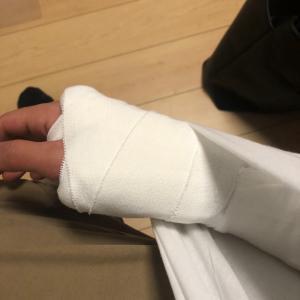 腕折れてから早2週間! いいこともあったのかな?