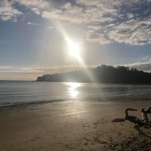 朝と夕方のビーチ