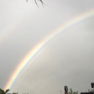 虹〜自分の心と感覚を大切に〜