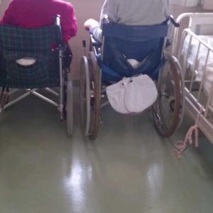 あの時の景色①~両親が車椅子で~