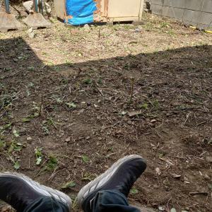 炎天下の中、実家で草刈り