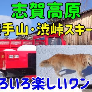 志賀高原横手山・渋峠スキー場(延長戦)。いろいろ楽しいものがありました!!