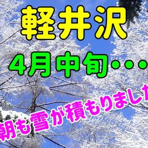 春の雪と青空。~4月中旬、今朝の軽井沢も雪が積もりました~