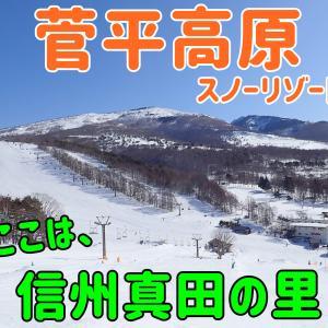 菅平高原スノーリゾート【ダボス編】真田の里、たおやかな広い斜面。