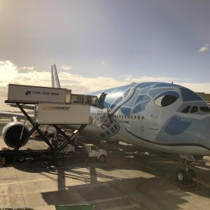 今年のハワイはANA A380ファーストクラス