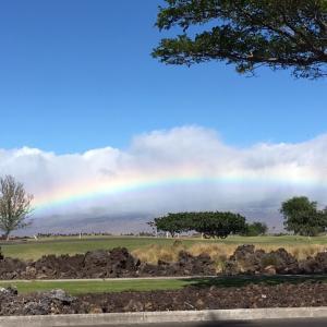 JGCとSPGはハワイ旅行にどのくらい役立つか カウアイ島とハワイ島で確認