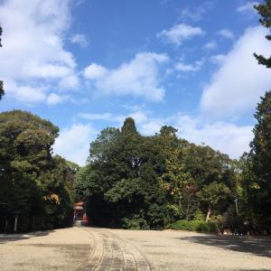 大宮氷川神社の紅葉