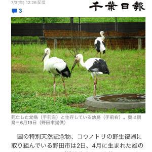 辛いニュース( ˃ ⌑ ˂ഃ )
