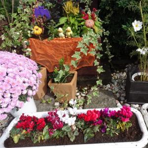 庭の冬支度と今日はバーゲンの日