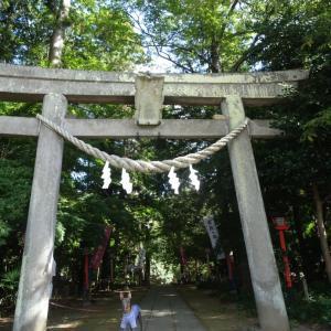 「奥の細道」間々田宿 其二〜間々田八幡宮