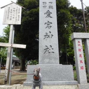 「かごめ かごめ」愛宕神社