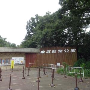 サマーナイトZOO in 東武動物公園
