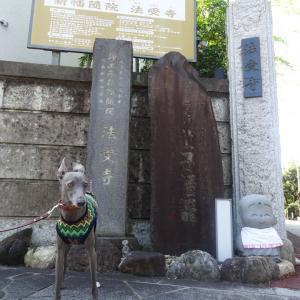 「牡丹灯籠」お露さんの墓碑