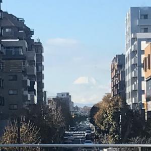 富士山パワーいただき