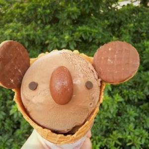 東山動物園へ行ったらコアラアイス(๑´ڡ`๑)