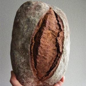 京丹後から農家パン弥栄窯のパンが届いたよ!まずはカンパーニュBio