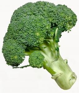 発がん物質を無毒化し、排出するブロッコリー