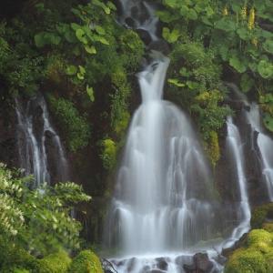 吐竜の滝 part1
