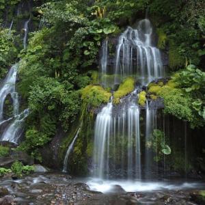 吐竜の滝 part2