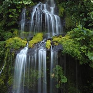 吐竜の滝 part3