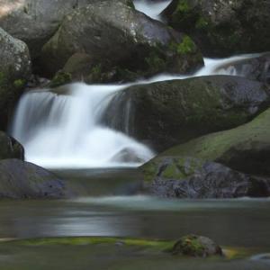 吐竜の滝 流れ編 part2