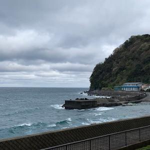 西伊豆 田子でボートダイビング