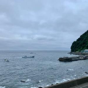 伊豆北川で体験ダイビング