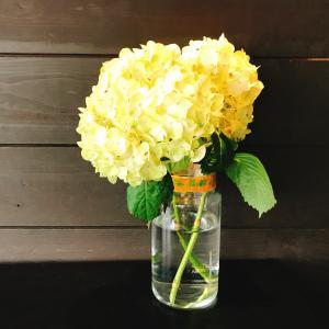 水谷潔 師の無料オンライン結婚セミナー2回シリーズのお知らせ