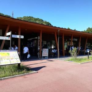 軽井沢に行こう。
