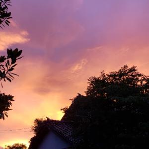 真っ赤な空に虹