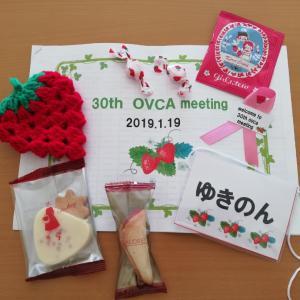 第30回OVCAミーティングに参加しました!