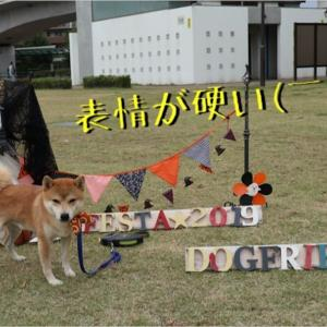 ドッグフレンドリーフェスタ「DOG FRIENDLY FESTA 2019」へ