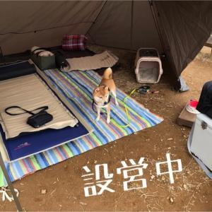 コロ助と二人で初キャンプ!