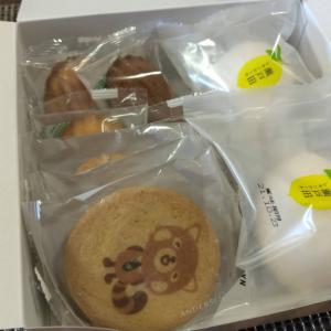 【3月優待】ひろぎんHDの株主優待で注文した「焼き菓子詰め合わせ」が到着