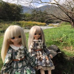 乙姫ちゃん達とGO TO 山梨!