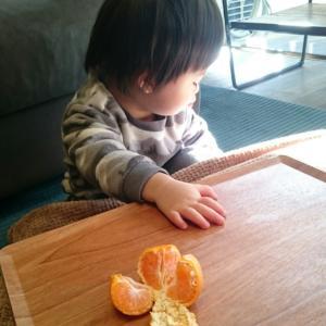 1歳8ヶ月とアレが匂いを失った話。