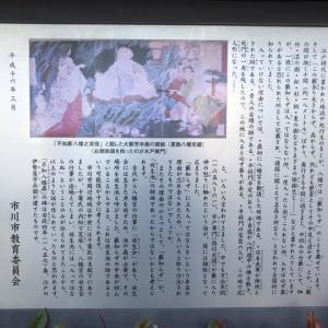 不知森神社  (千葉県市川市八幡2丁目8)、2019-1-19