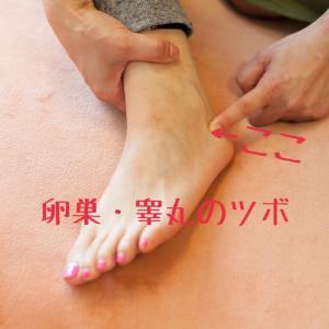 卵巣・睾丸セルフケア