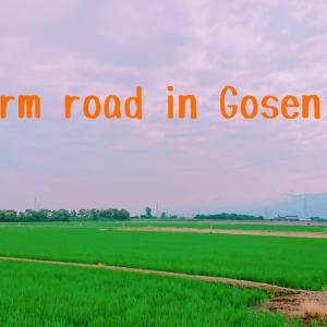 Farm road in Gosen✨