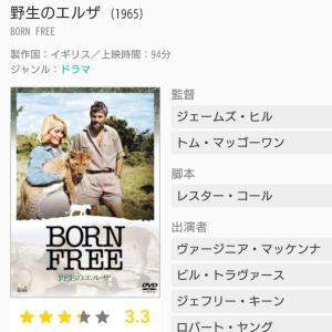 野生のエルザ ~Born free~