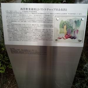トマトケチャップ 日本発祥の地